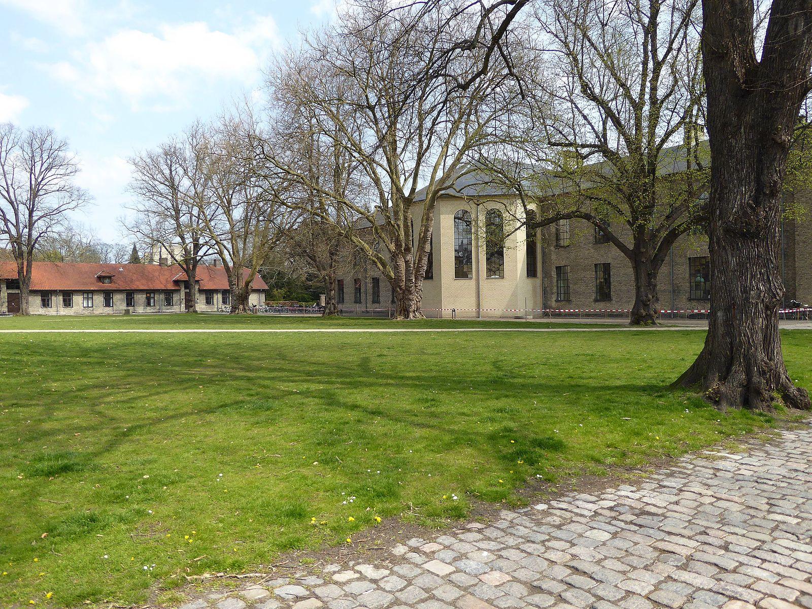 frederiksberg_campus_groennegaarden_lawn
