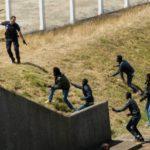 Fire politimænd såret efter et bagholdsangreb fra illegale migranter