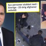 Sveriges statsminister: Afghansk terrorangreb har ikke noget med indvandringen at gøre